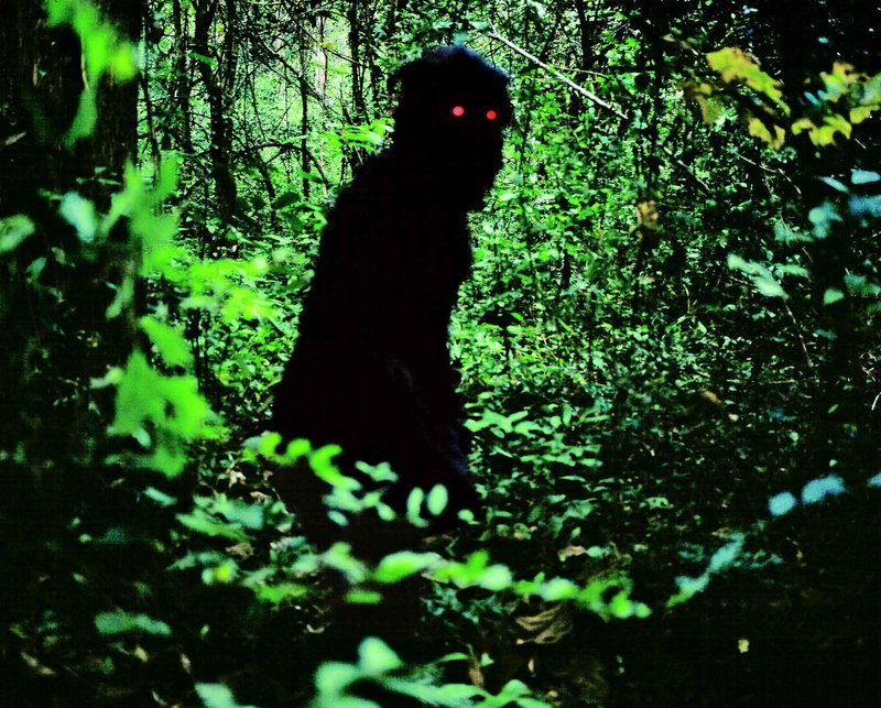 6. Apichatpong Weerasethakul / Uncle Boonmee Who Can Recall His Past Lives