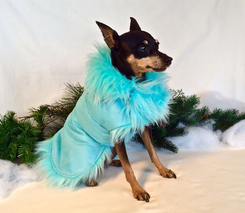Tiffany Blue Glamorous Faux Fur Dog Winter Coat for Dogs and Puppies (Etsy.com)