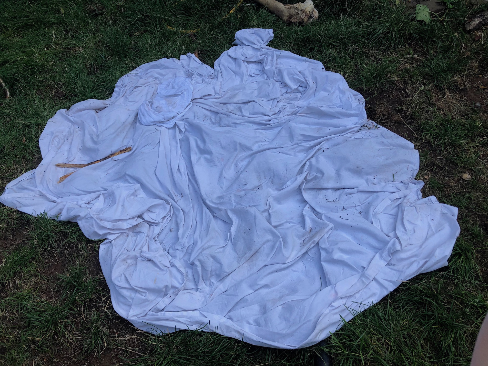 Blanket in the garden.