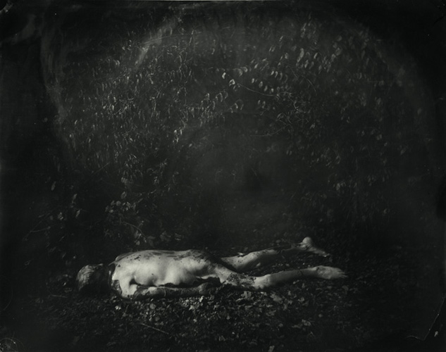 "Sally Mann, ""Body Farm"", 2005."