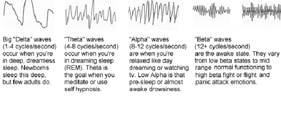 Dream and waking waves