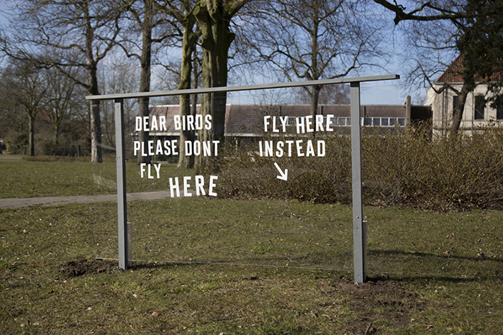 Willem de Haan, Dear Birds, 2018