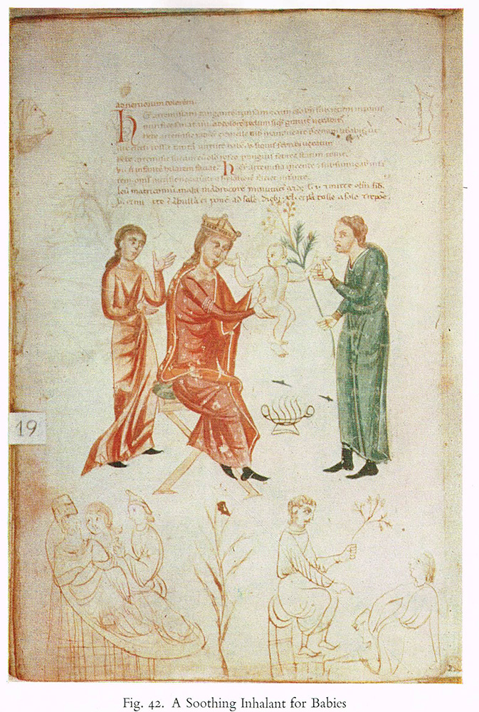 Medical illustrations in medieval manuscripts, T. Herndon, 1965