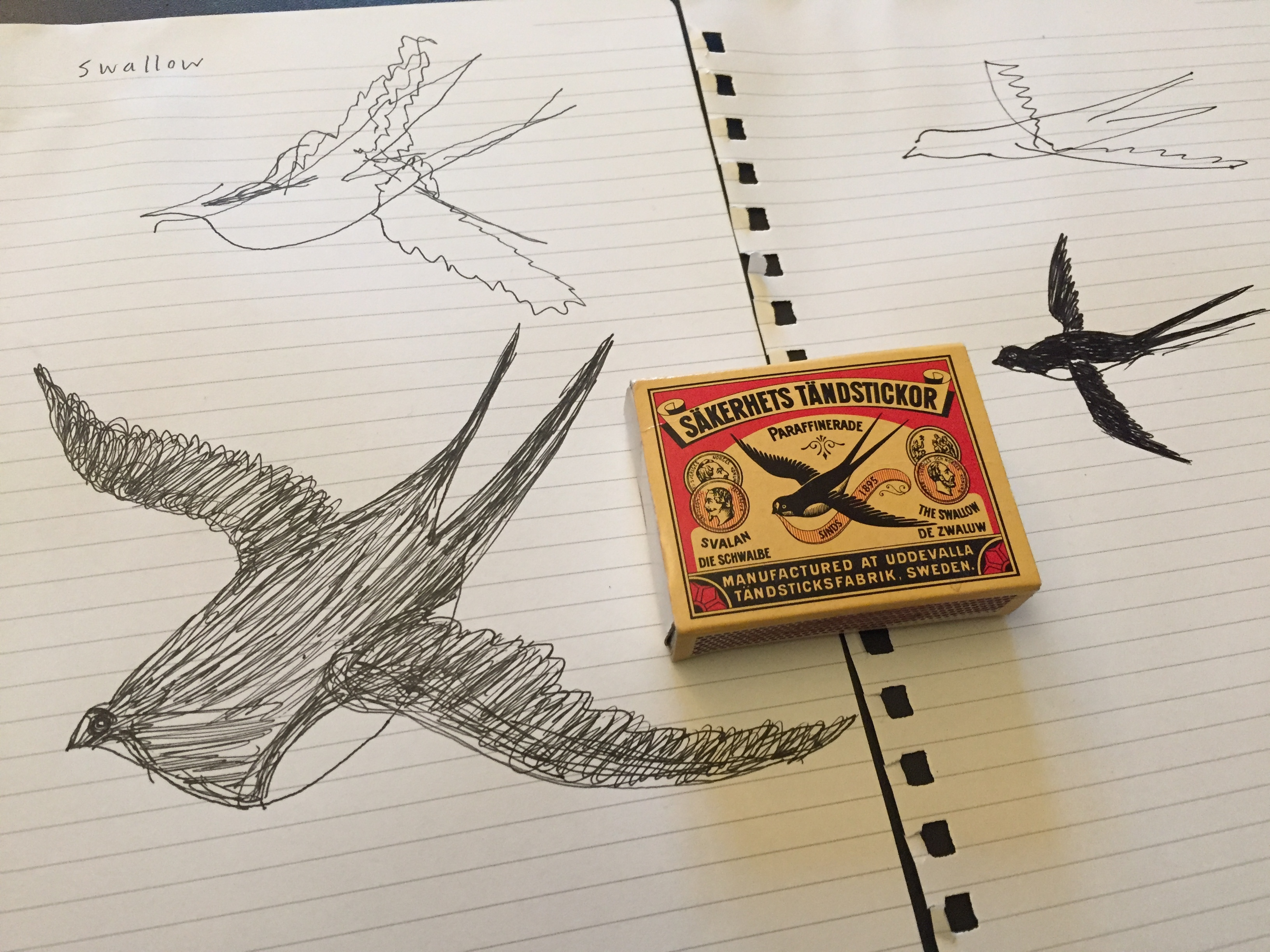 matchbox drawing with Emily