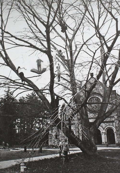 Tree dance by Gordon Matta Clark, 1971