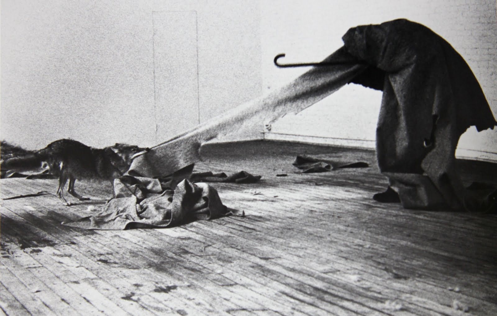 Joseph Beuys - I Like America and America Likes Me